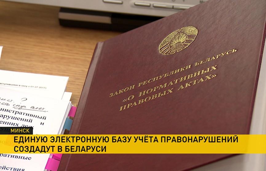 Единую электронную базу учета правонарушений создадут в Беларуси