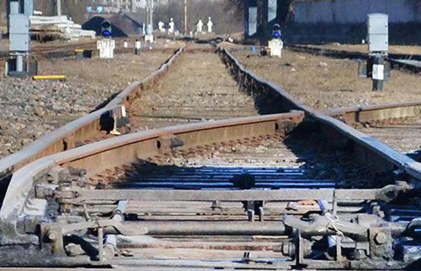 Товарный поезд сбил школьницу в Рогачёве