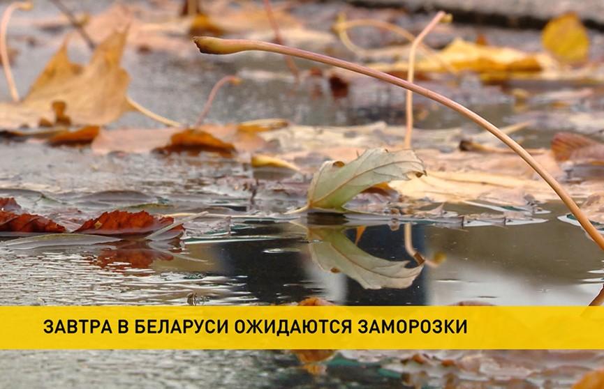 Зима близко. Прогноз погоды на понедельник, 9 ноября