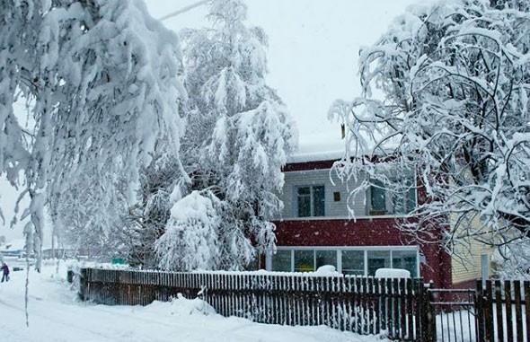 Мощный снегопад в Алтайском крае: 20 населенных пунктов остались без электричества
