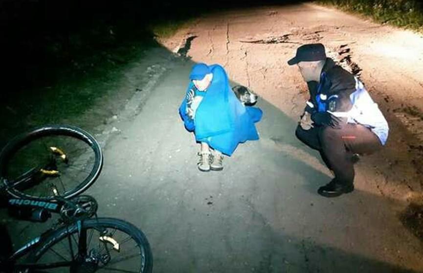 Бродячая собака всю ночь согревала травмированного велосипедиста в Румынии