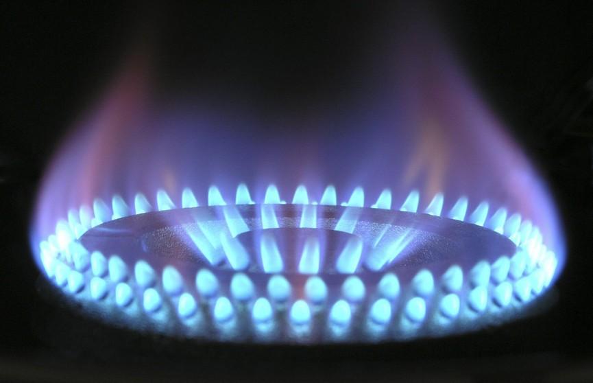 Александр Лукашенко высказался по поводу поставок российского газа в Беларусь