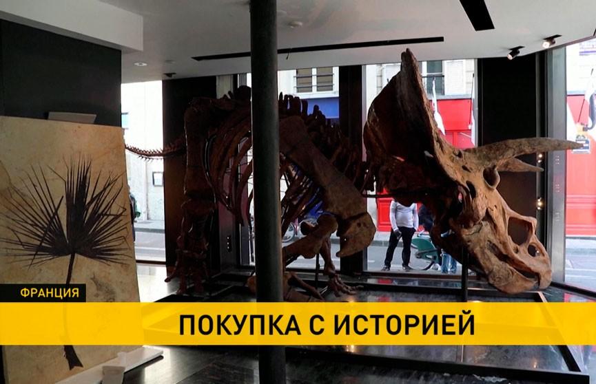 Скелет крупнейшего в мире трицератопса выставлен на аукцион