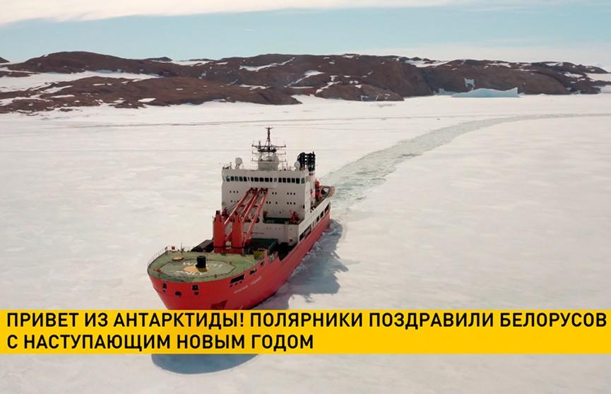 Привет из Антарктиды: с Новым годом белорусов поздравили полярники
