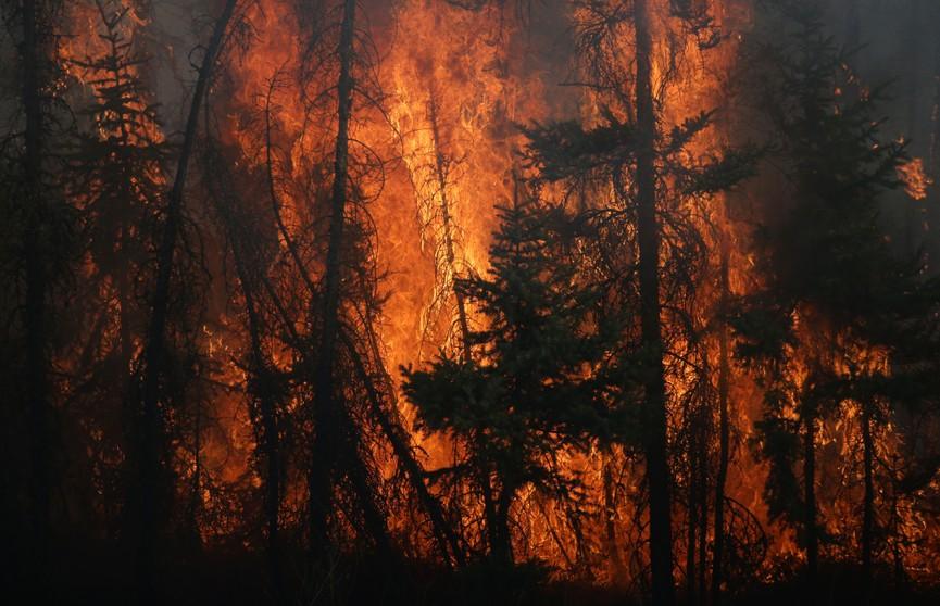 Лесные пожары в Канаде: более 9 тысяч человек эвакуированы