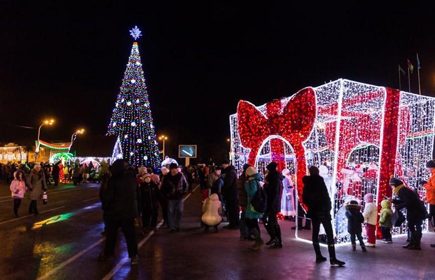 Главная новогодняя ёлка города установлена в Гомеле