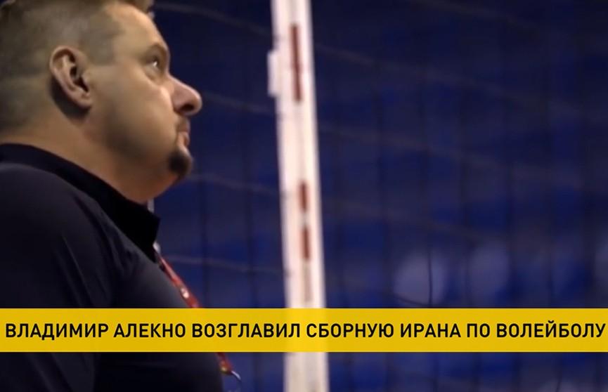 Уроженец Полоцка Владимир Алекно возглавит сборную Ирана по волейболу