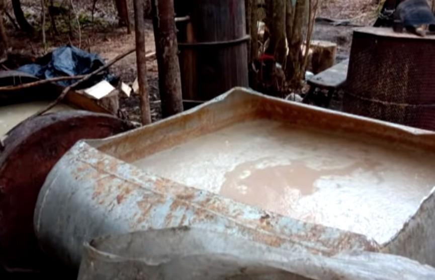 Пару самогонных заводиков нашли в лесах Гродненской области