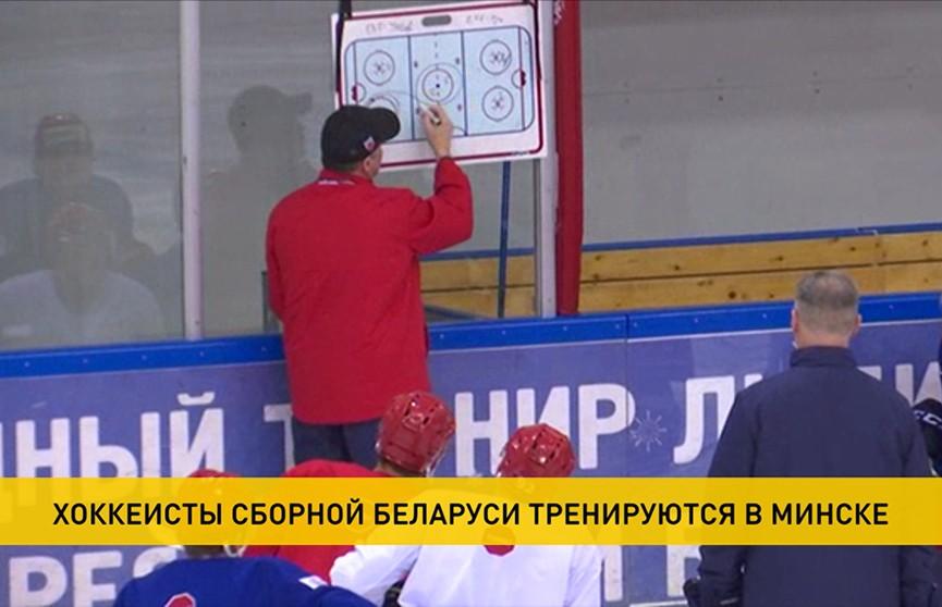 Хоккеисты сборной Беларуси тренируются в Минске