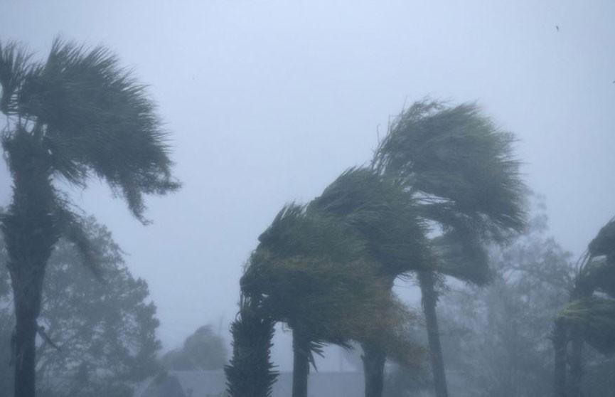 Число жертв урагана «Майкл» в США увеличилось до шести человек