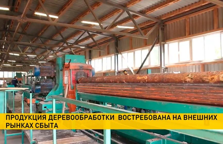 Рост выручки, стабильная работа,  замещение природного газа на щепу и пеллеты – Лукашенко оценил перспективы развития лесного хозяйства