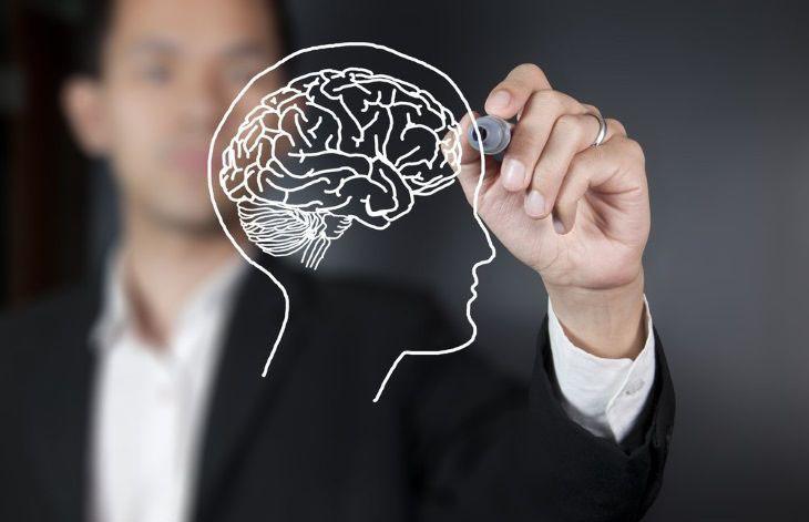 Как защитить мозг от возрастных разрушений? Ученые назвали способы