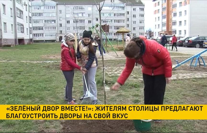 Проект «Зелёный двор вместе!»: жителям Минска предлагают благоустроить дворы на свой вкус