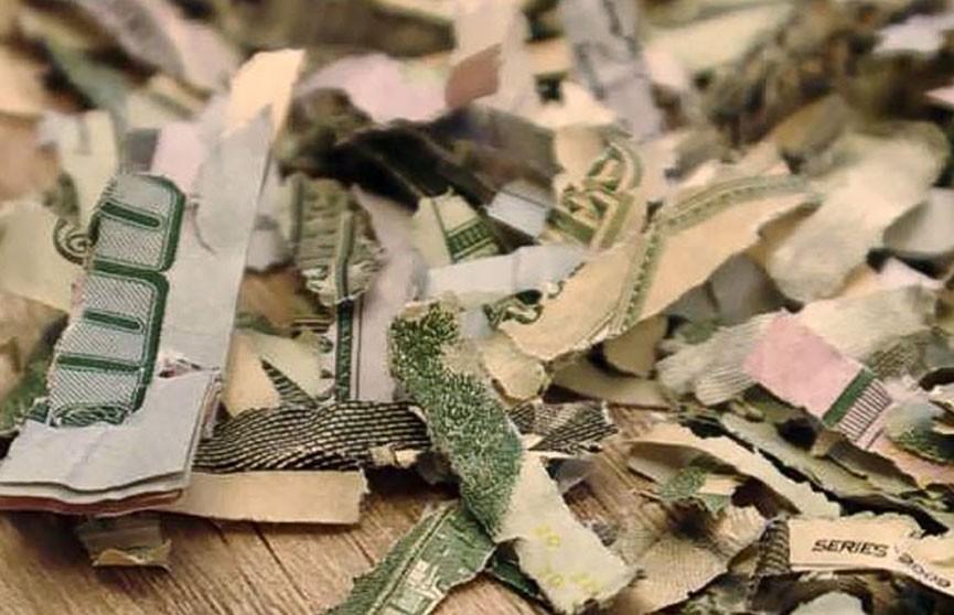 Двухлетний мальчик засунул в измельчитель бумаги сбережения родителей