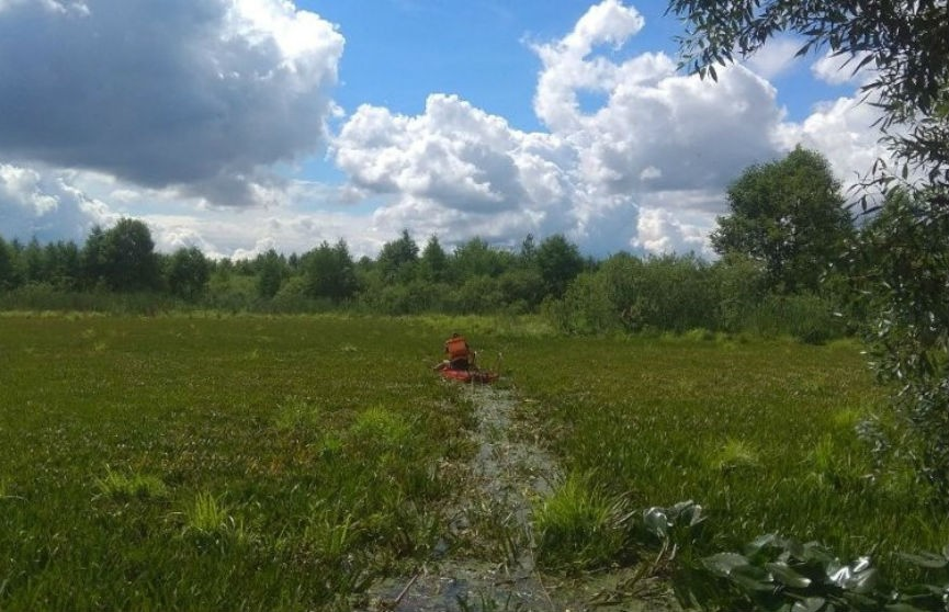 Двое жителей Петрикова застряли по шею в воде в лугах Припяти