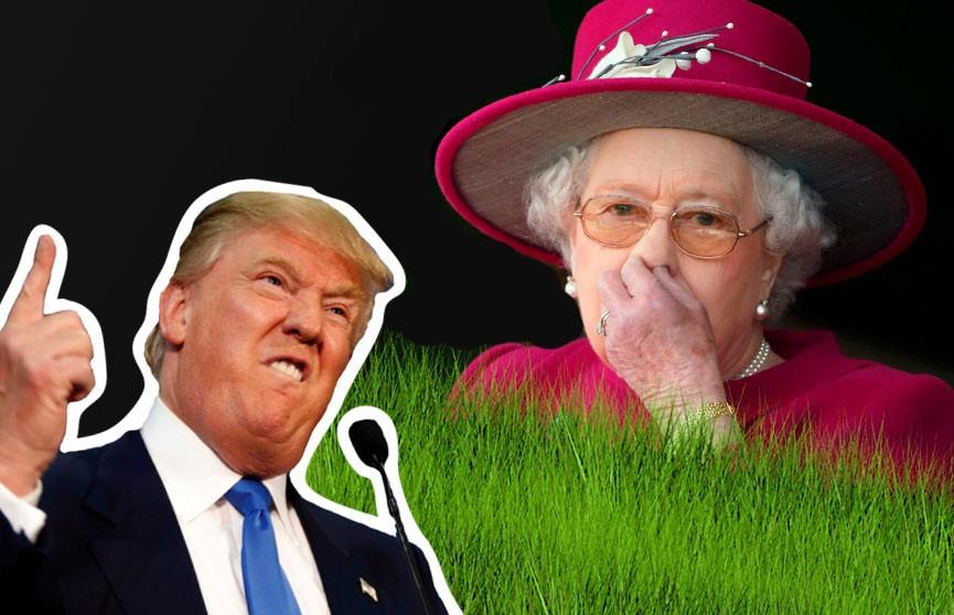Елизавета  II пожаловалась на то, что Трамп испортил её газон