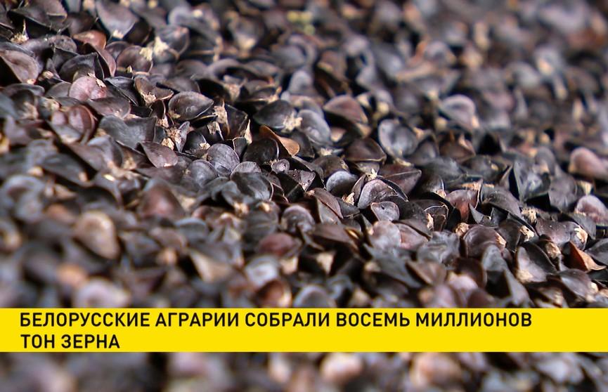 Белорусские аграрии собрали 8 миллионов тонн зерна