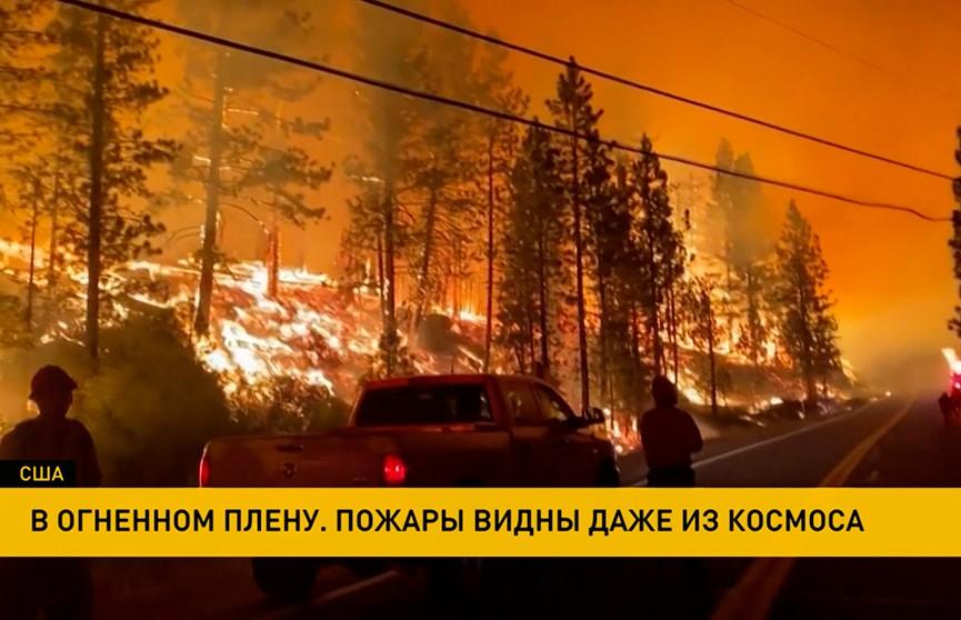 Лесные пожары в США охватили территорию 13 штатов