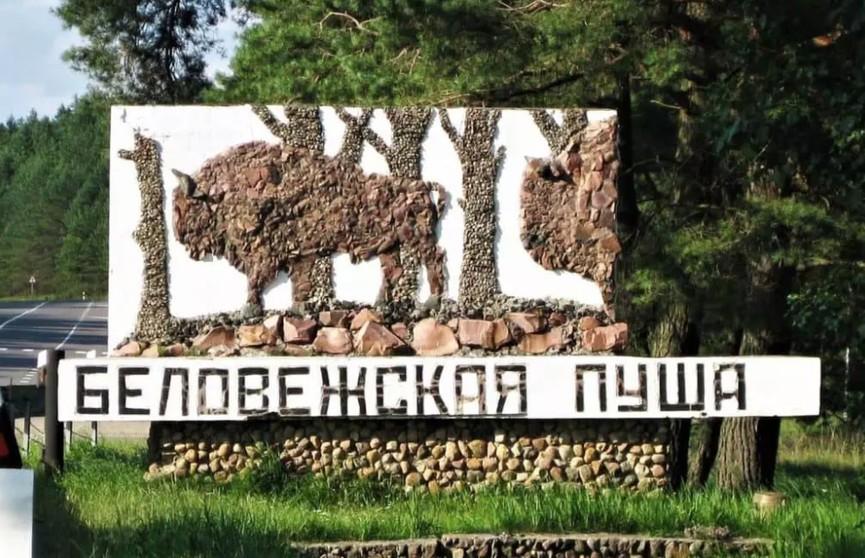 В Беловежской пуще воссоздадут стоянки каменного и бронзового веков