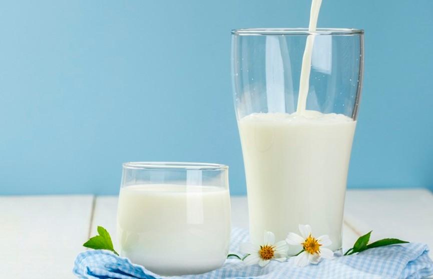 Беларусь и Россия обсудят «молочный вопрос»