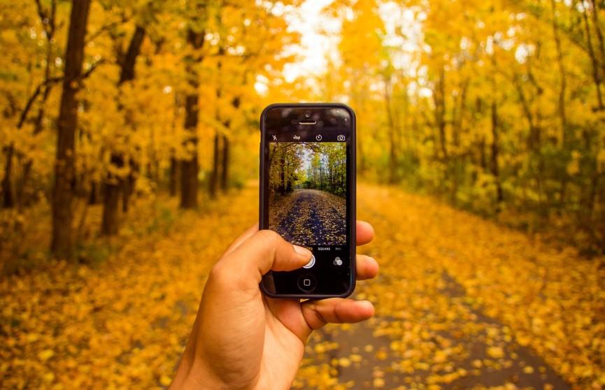 Какие экраны смартфона вредны для человека? Рассказывает эксперт