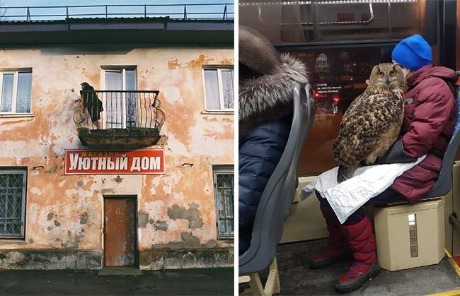 10 фотографий российской действительности, которые рассмешат и удивят вас одновременно