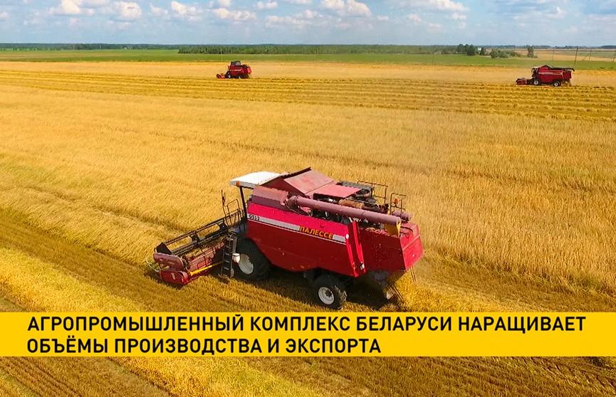 Агропромышленный комплекс Беларуси наращивает объемы производства и экспорта