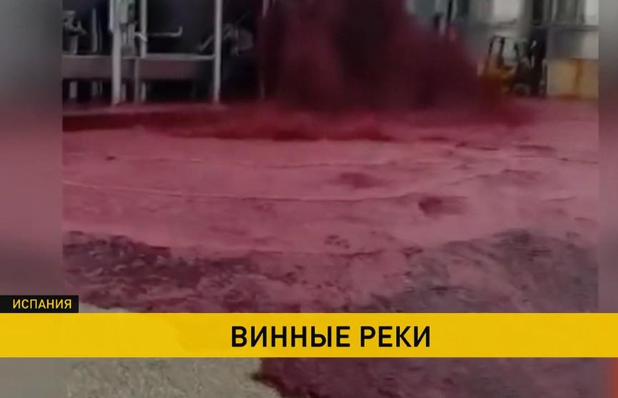 В Испании случился винный «потоп»: пролились 50 тысяч литров вина