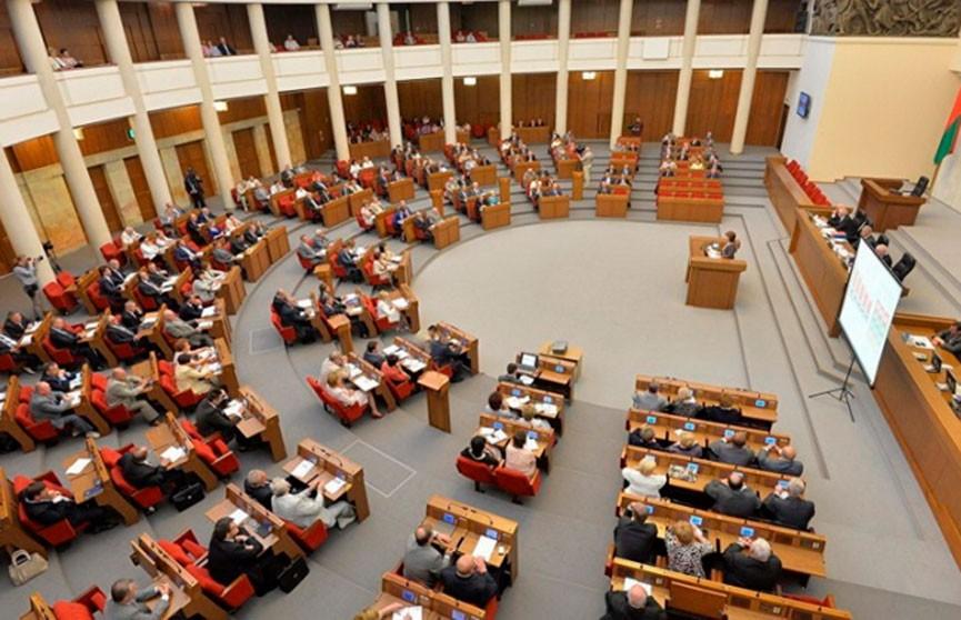 Белорусский парламент. История первого созыва