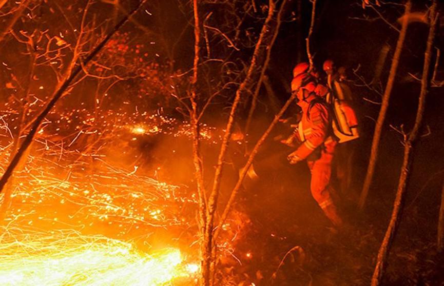 Лесной пожар бушует в Китае, эвакуировано 11 тысяч человек