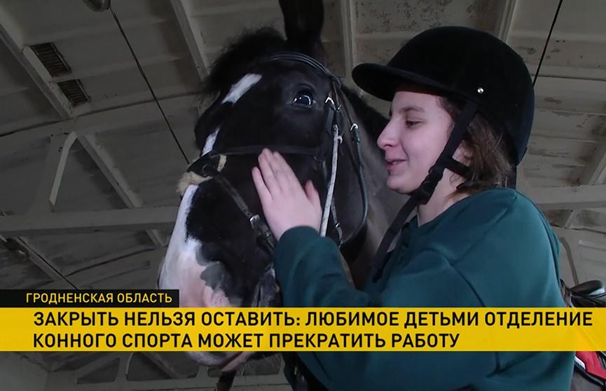 Под Гродно на грани закрытия крупнейшая детская конно-спортивная школа. Какие решения проблемы предлагают?