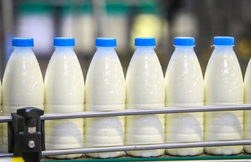 Беларусь бесплатно поставит в Венесуэлу 500 тонн сухого молока