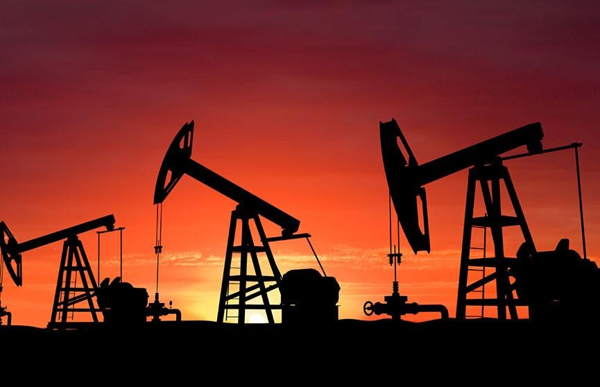 Беларусь и Россия договорились о поставках нефти в полном объеме