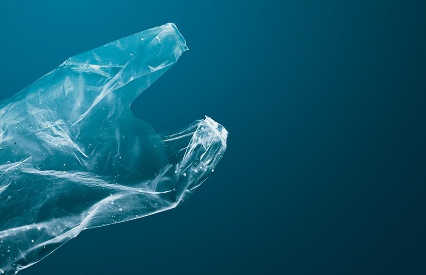 Британские ученые создали безопасный для природы пластик