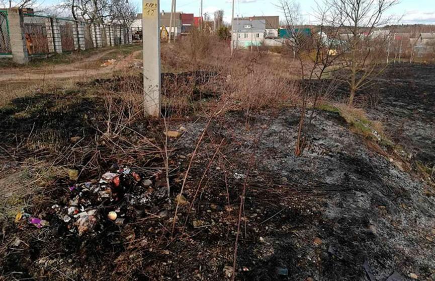 Пенсионер погиб, сжигая мусор во дворе