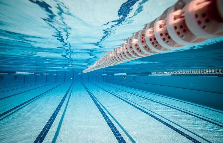 Лукашенко: плавание и лёгкую атлетику нужно носить на руках