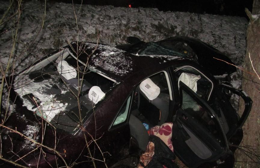 ДТП в Полоцком районе: бесправник на Audi врезался в дерево и погиб