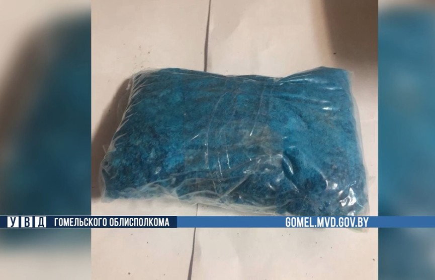 Крупный наркосиндикат выявлен на Гомельщине