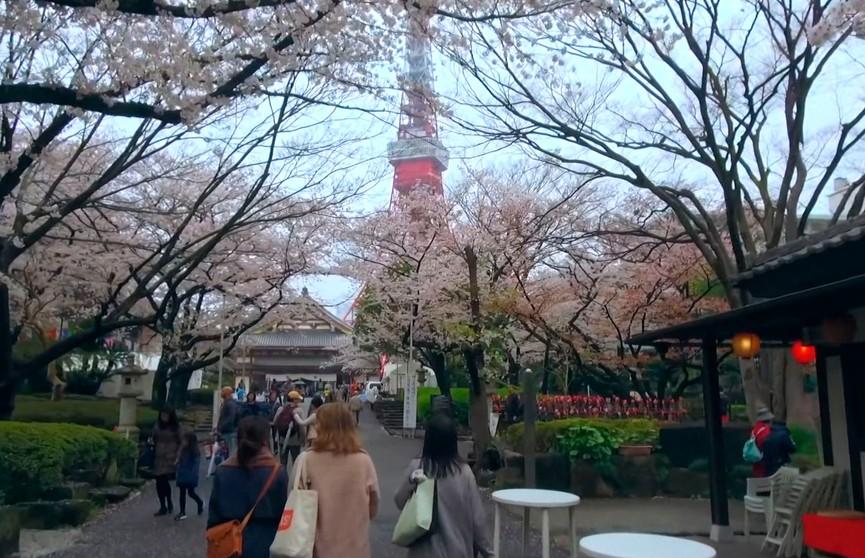 Весна в разных странах мира: особенности и традиции