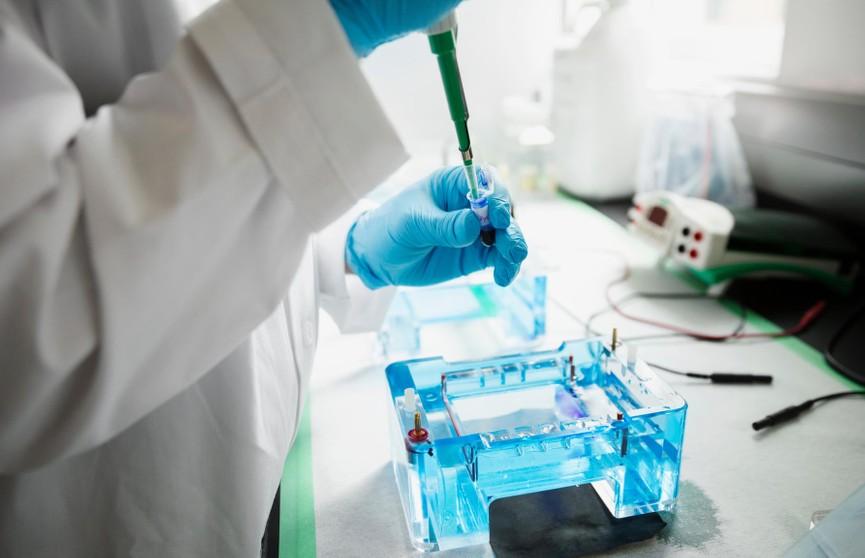Лекарство для продления жизни и молодости разработали в Швеции