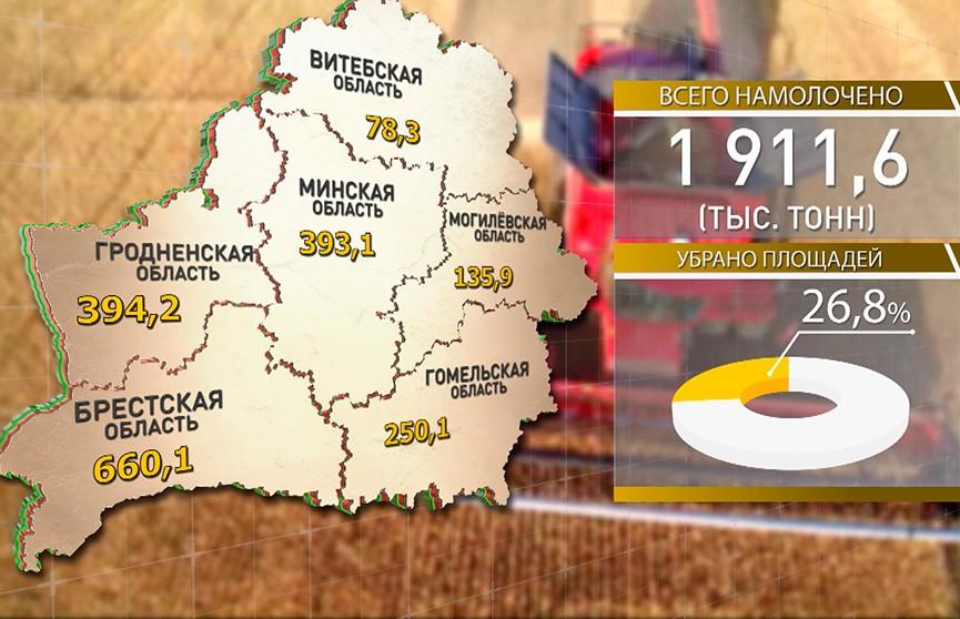 Жатва-2019 в цифрах: самая высокая урожайность зерновых в этом сезоне в Гродненской области