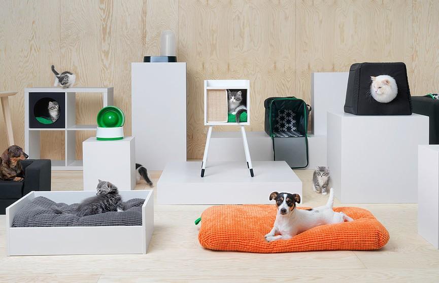 Из ИКЕА теперь можно уйти не только с мебелью, но и с другом