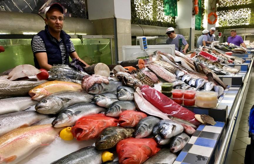Эта рыба опасна для здоровья! Не ешьте ее никогда!