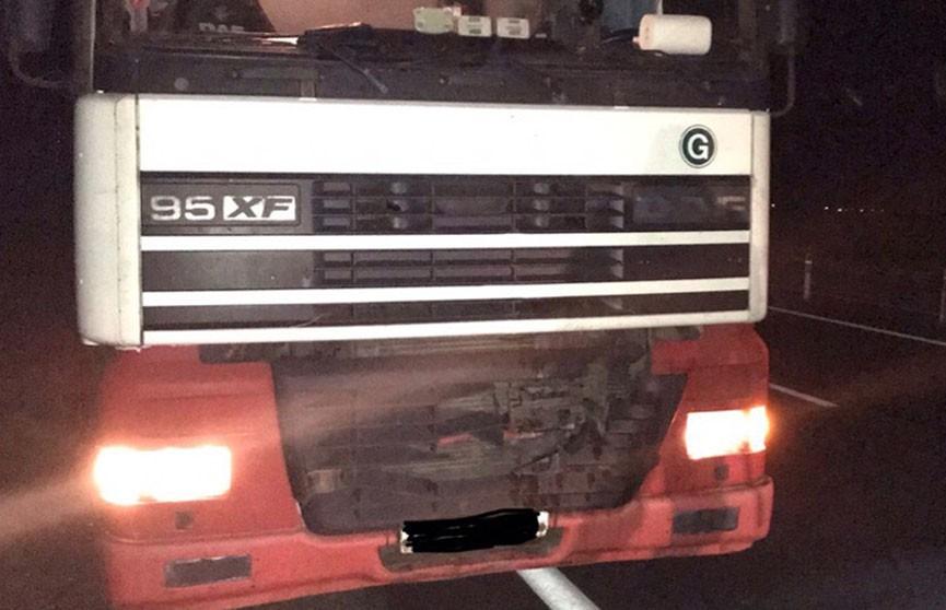 Фура насмерть сбила пешехода на трассе М1 под Оршей