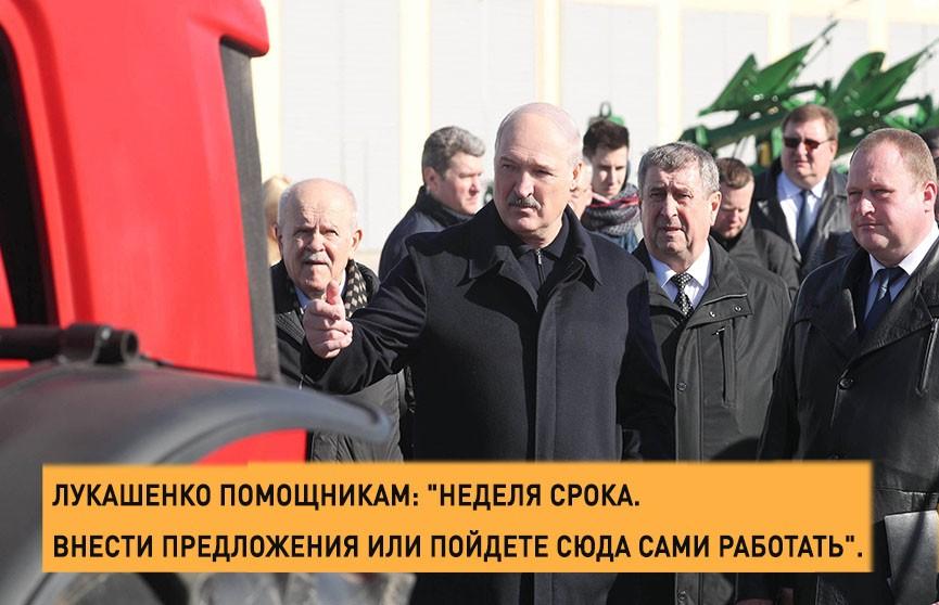 Лукашенко – аграриям: неделя срока или будут приняты жёсткие меры