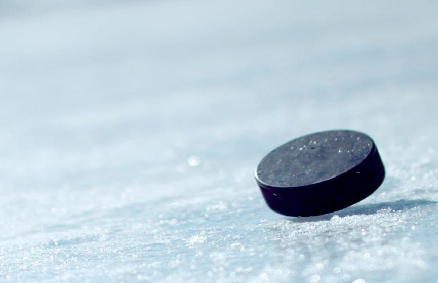 Чемпионат Беларуси по хоккею: «Шахтер» обыграл «Гомель»