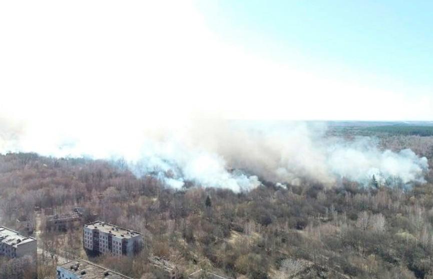 В Чернобыльской зоне потушили крупный пожар