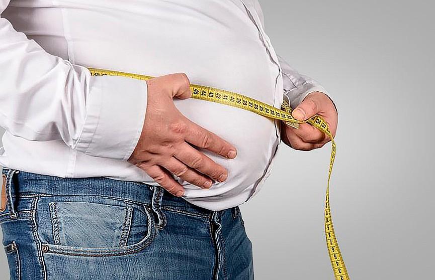 Избыток жира на животе свидетельствует о маленьком размере мозга – исследование