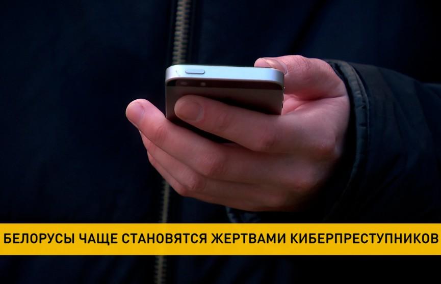 Белорусы всё чаще становятся жертвами киберпреступников из России и Украины