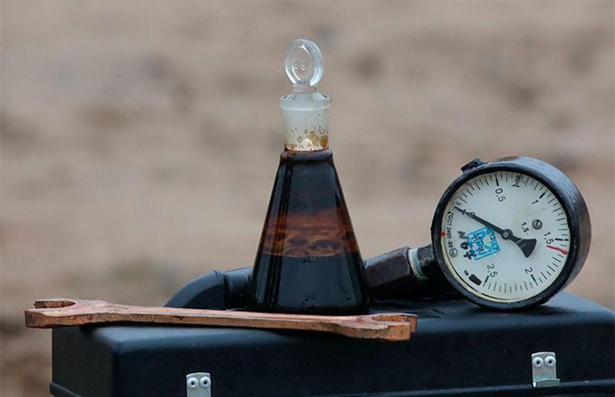 Беларусь установила тарифы на транспортировку нефти от Мозыря до Адамовой Заставы в Польше